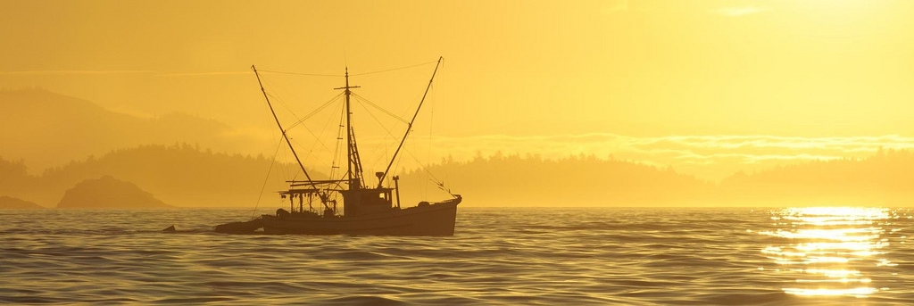 Licence Retirement Program Presents Difficult Choices for Fishermen
