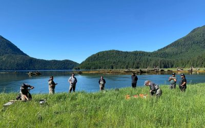 Measuring estuary resilience to sea level rise at the Moyeha River
