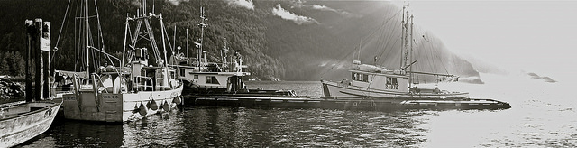 boats_harbour_BW