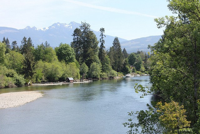 Study of Summer and Winter Run Steelhead Distributions in the Somass, Ash and Stamp Rivers